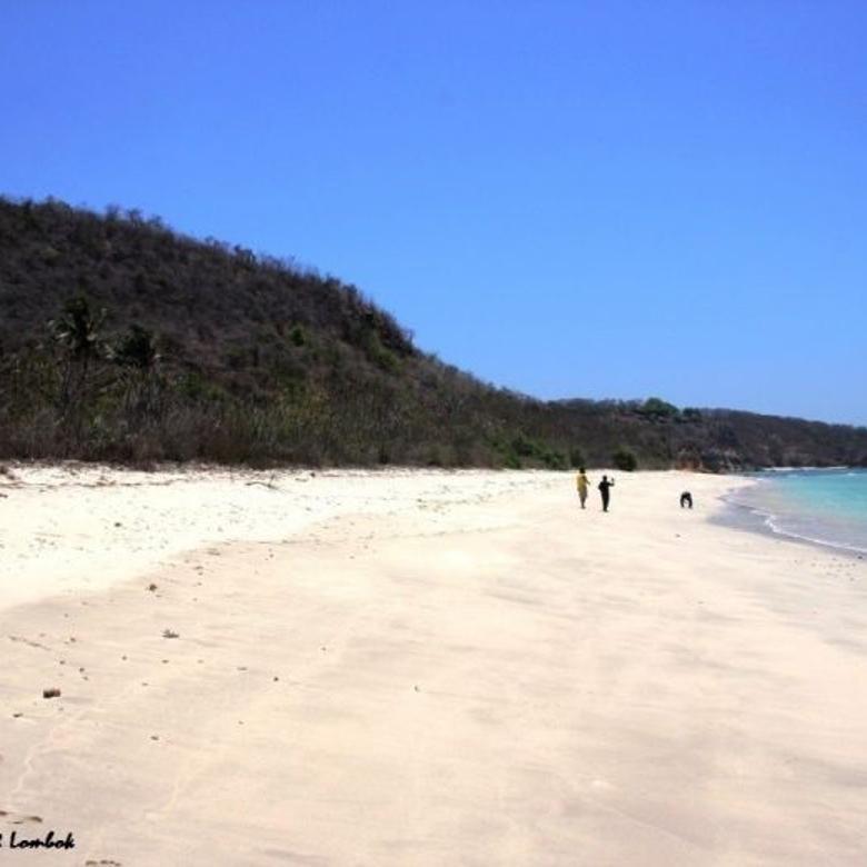 Tanah-Lombok Timur-4