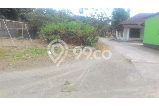 Beli Tanah Kalasan, Rejeki Melimpah Lalu Bangun Rumah 13424946