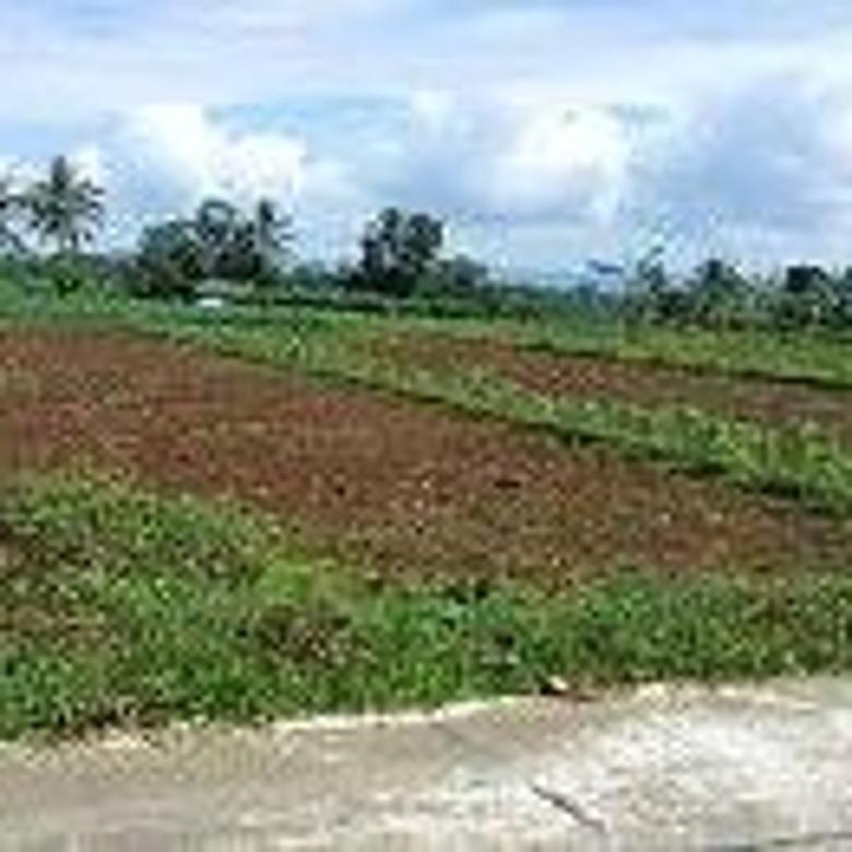 Tanah Murah Kampung Wisata Tegal Waru U Villa Pertanian Perkebunan