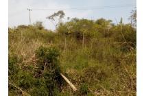 Investasi kebun Pinggir jalan daerah wisata Gambung Ciwidey