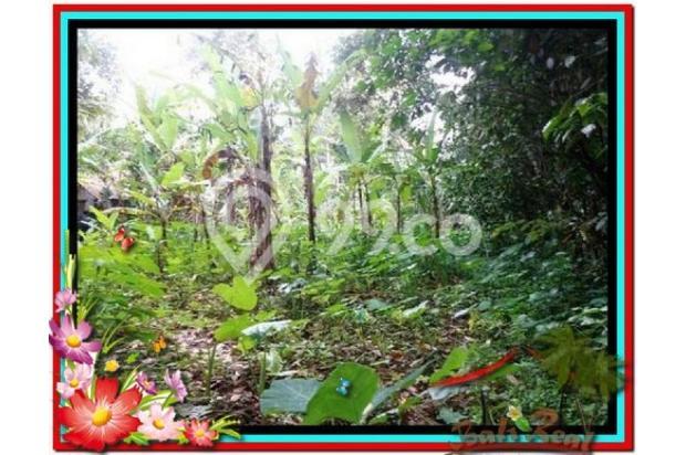 Lokasi Strategis view Fantastis, 1.000 m2 View Kebun di Ubud Tegalalang 3873236