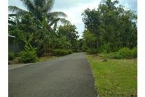 Tanah Kulon Progo Dekat Bandara NYIA Jogja
