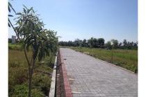 Tanah Kavling Pering ~ Gianyar ~ Bali