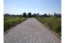 Tanah-Gianyar-5