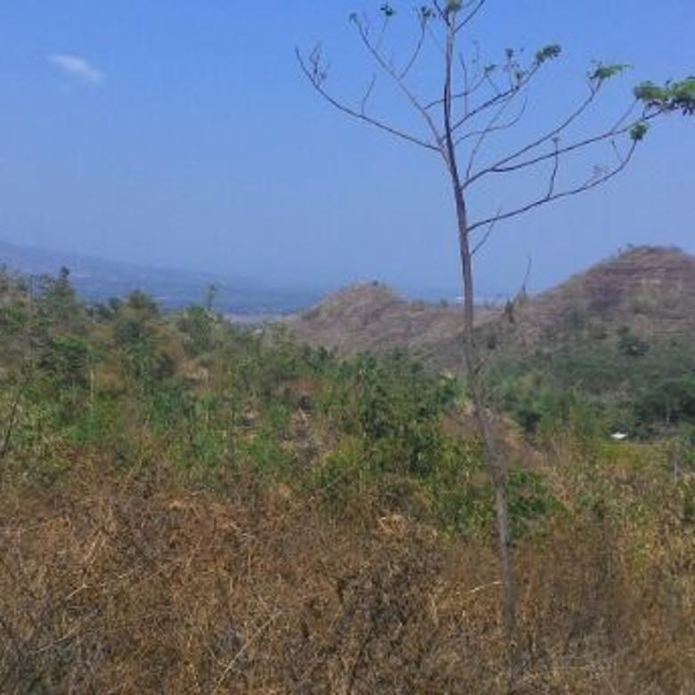 Tanah Kebun Murah di Puncak Suji Babakan Peuteuy Cicalengka