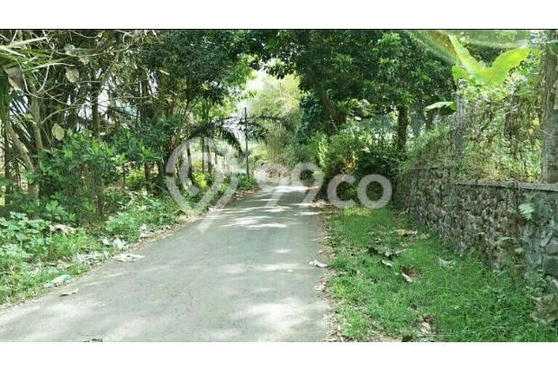 Tanah Murah cocok untuk perumahan di belakang Jatim Park 3 Beji Batu 13697132