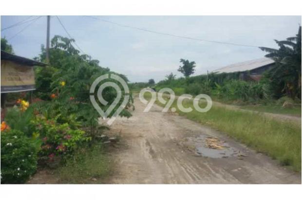 Dijual Rumah di Suka Tani Batang Kuis 7853862