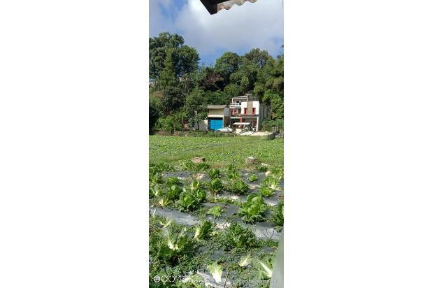 Rp3,89mily Tanah Dijual