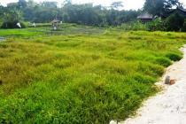 Tanah Murah view sawah lingkungan villa di Canggu Brawa  CGC22