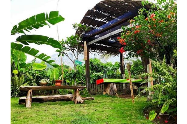 villa homestay guest house bangunan jawa etnik di kawasan candi borobudur