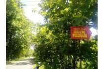 Pilih Green  Sendangsari, 12 X Bayar Tanpa Bunga