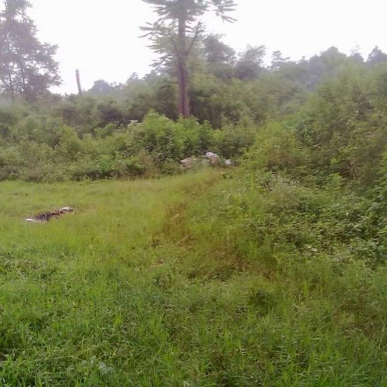 Di Jual Cepat Tanah Mainroad, Jl.Haji Gofur, Ngamprah, TURUN HARGA