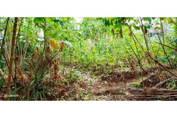 Rp4,22mily Tanah Dijual