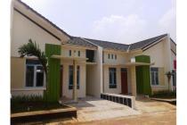 Rumah Modern minimalis dengan nuansa hijau,Asri dan nyaman