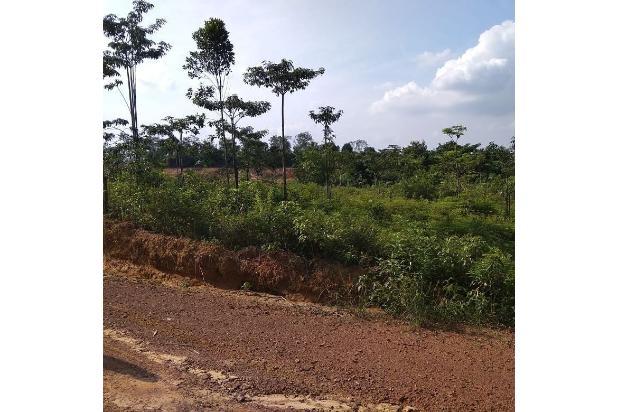 Rp9,25mily Tanah Dijual