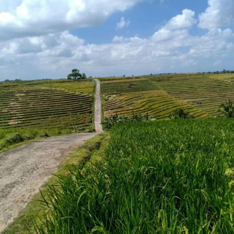 Tanah murah di Tabanan