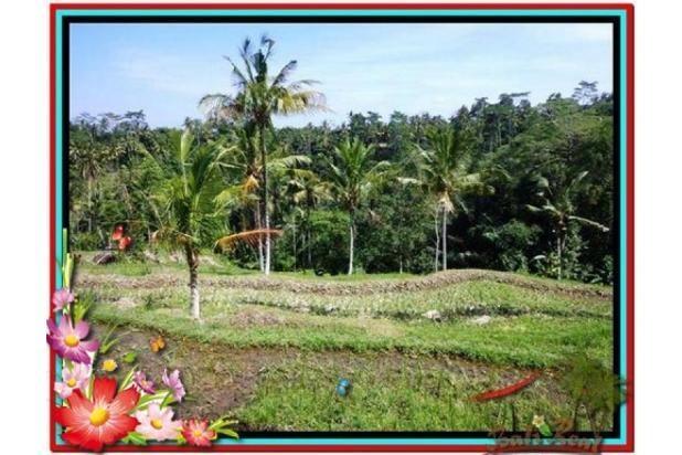 Murah Strategis 1.900 m2  View Sawah di Ubud TJUB505  4292192