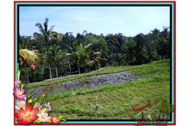Murah Strategis 1.900 m2  View Sawah di Ubud TJUB505  4292193