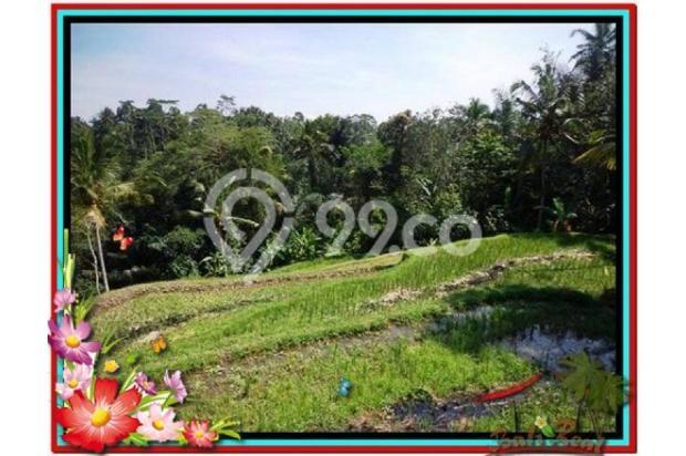 Murah Strategis 1.900 m2  View Sawah di Ubud TJUB505  4292194