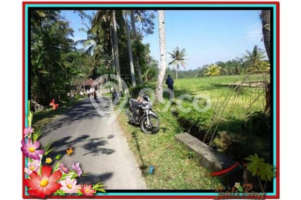 Murah Strategis 1.900 m2  View Sawah di Ubud TJUB505  4292196