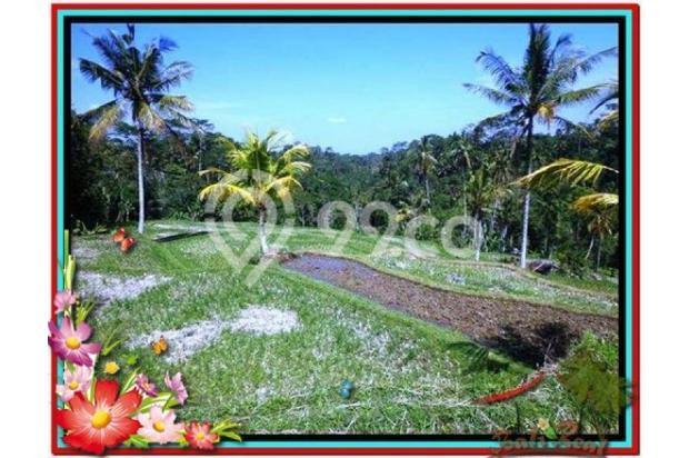 Murah Strategis 1.900 m2  View Sawah di Ubud TJUB505  4292198