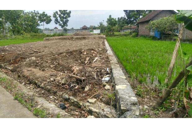 Info Tanah Jogja Dijual, Tanah Pekarangan Di Pendowoharjo 16845288