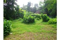 Beautiful Prospektif 1,700 m2 tanah di Sentral Ubud UB600