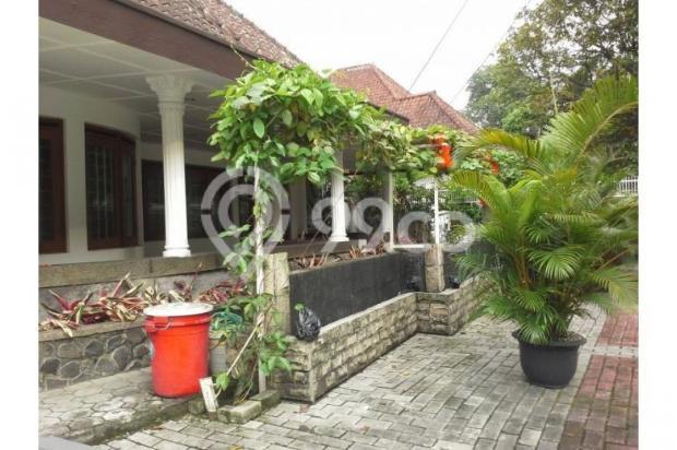 Rumah Antik Sayap Riau dgn Arsitektur Kokoh Khas Belanda 11339651
