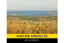 kavling gringo lombok timur
