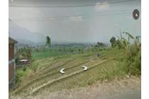 Lahan 3 Hektar Garut,Cocok Untuk Perum,Kawasan Industri dll
