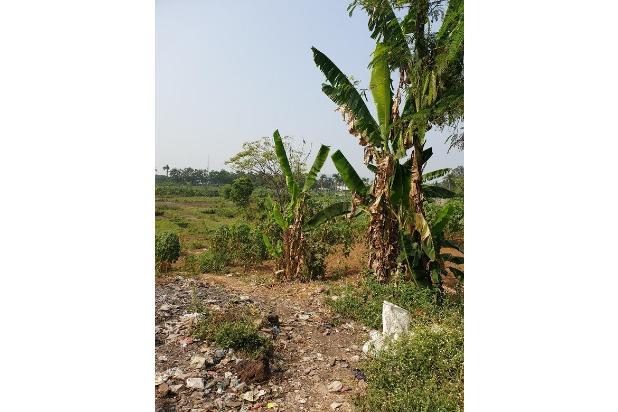 Rp83,2mily Tanah Dijual