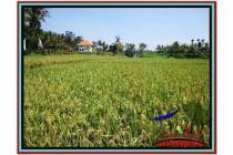Strategis sangat Langka Tanah 4.000 m2 Sentral di Ubud B527
