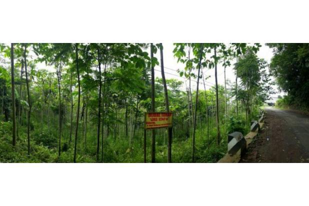 Tanah strategis pinggir jln di Suka negla garut lt.9420m2 15045584