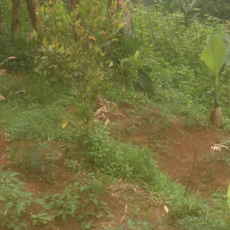 Jual Tanah Murah 2 Hektar Di Cililin Kota Bandung Barat