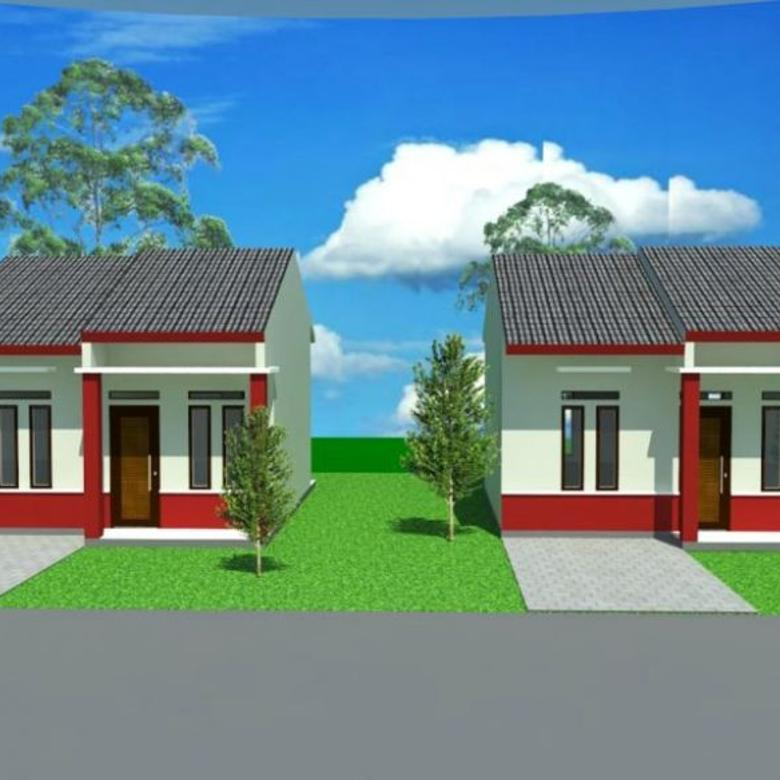 Tanah-Barito Kuala-2