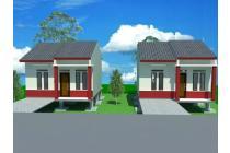 Tanah-Barito Kuala-5