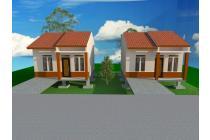 Tanah-Barito Kuala-6
