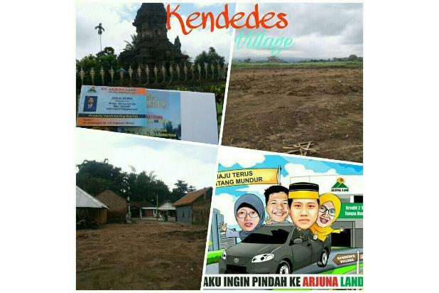 Arjuna Land 15894375