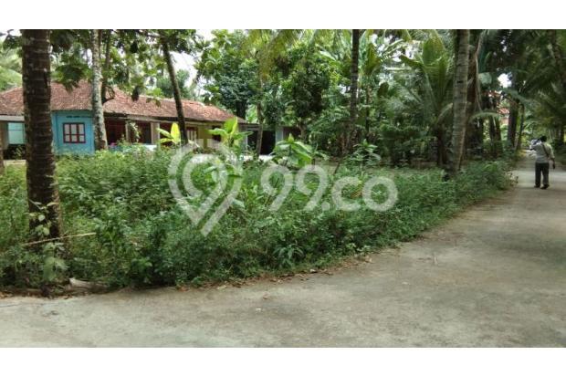 Tanah Pekarangan Area Kulon Progo di Ngestiharjo 18274089