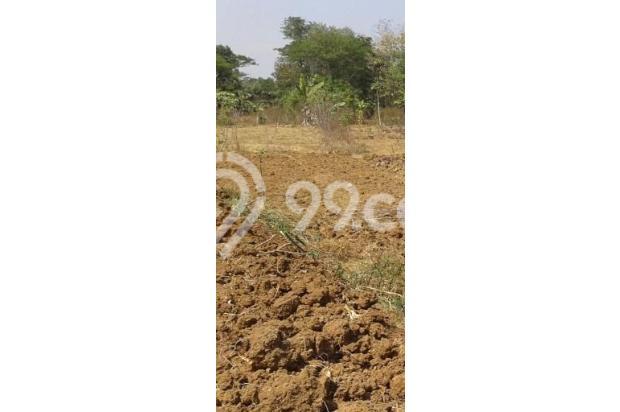 Tanah dijual dibotolingga 17994235