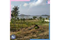 Tanah bukit Kuang Landok Mertak Kuta Lombok tengah T360