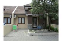 Rumah minimalis cocok untuk investasi, posisi tersewa oleh orang korea
