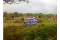 Tanah Dijual Jalan Raya Palmerah Buring Malang