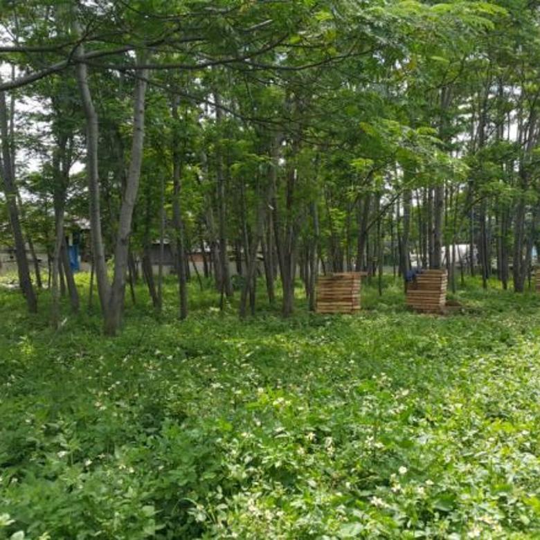 Tanah Komersial, strategis, 2,5 ha, Pulogadung