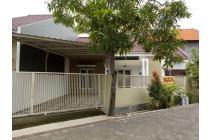 Rumah Mudah & Baru Tengah Kota Sidoarjo ( Bumi Citra Fajar )