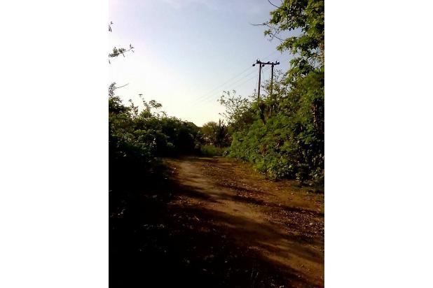 Rp500jt Tanah Dijual