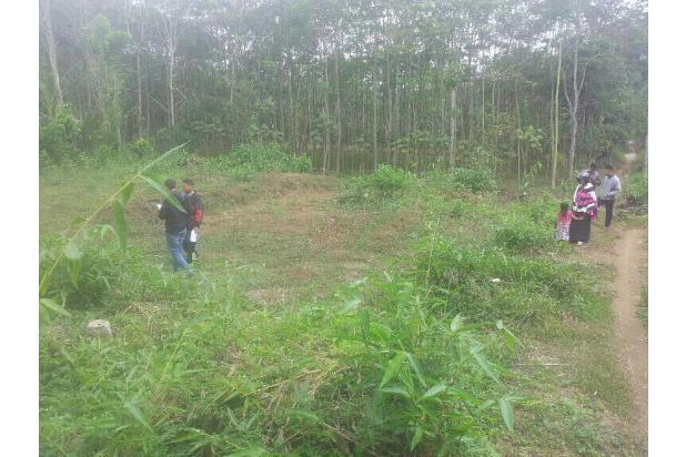 Tanah Kavling 39Jtan. Cocok Buat Investasi karena Dekat tol Exit Malang 13698407