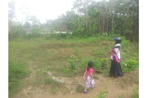 Tanah Kavling 39Jtan. Cocok Buat Investasi karena Dekat tol Exit Malang 13698422