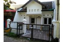 Disewakan Rumah Siap Huni Murah Di Wiguna