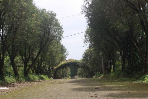 Investasi Kavling Villa Puncak Cipanas, Green Montana Village 16223950